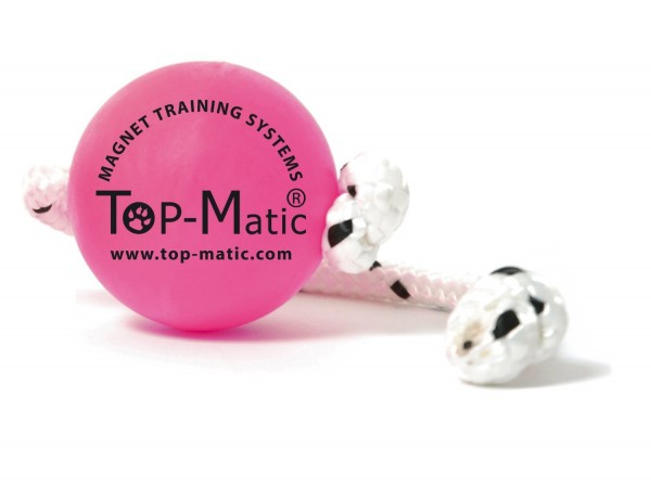 Top-Matic Fun Puppy