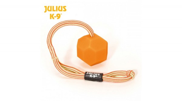 K9 Ball Neon