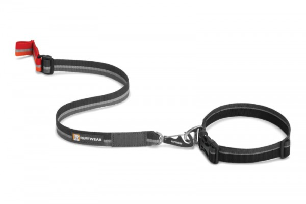 Quick Draw Leash